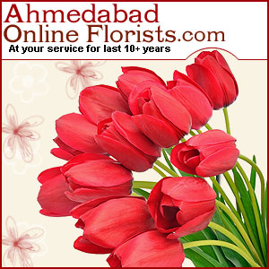 Ahmedabad2.jpg